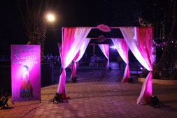 theme-based-birthday-parties-organisers
