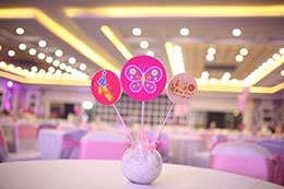 Butterfly-Garden-Birthday-Party-in-hyderabad