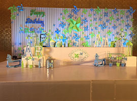 theme-based-birthday-party-organisers-in-hyderabad